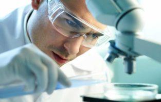 Veja os principais temas de TCC de Biomedicina